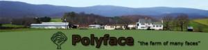 banner_polyface farm