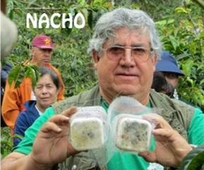 Nacho SImón