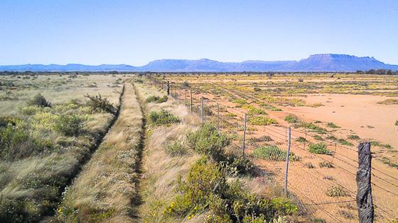 ambos lados de la valla en sudáfrica-1
