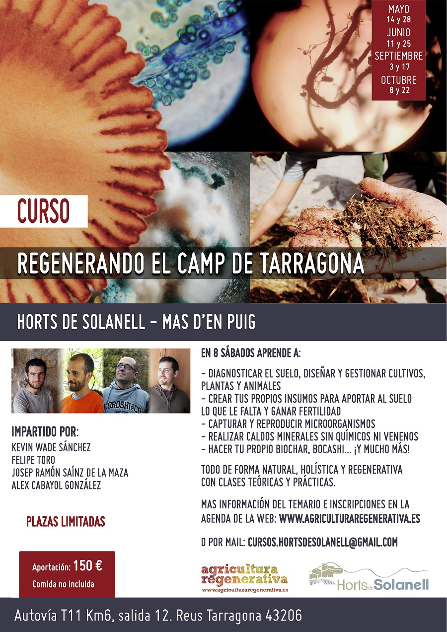 Cartel Curso anual Solanell Castel_peq